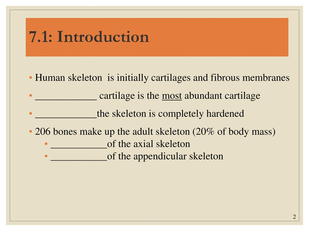 Famous Chapter 1 Introduction To Human Anatomy And Physiology Mold ...