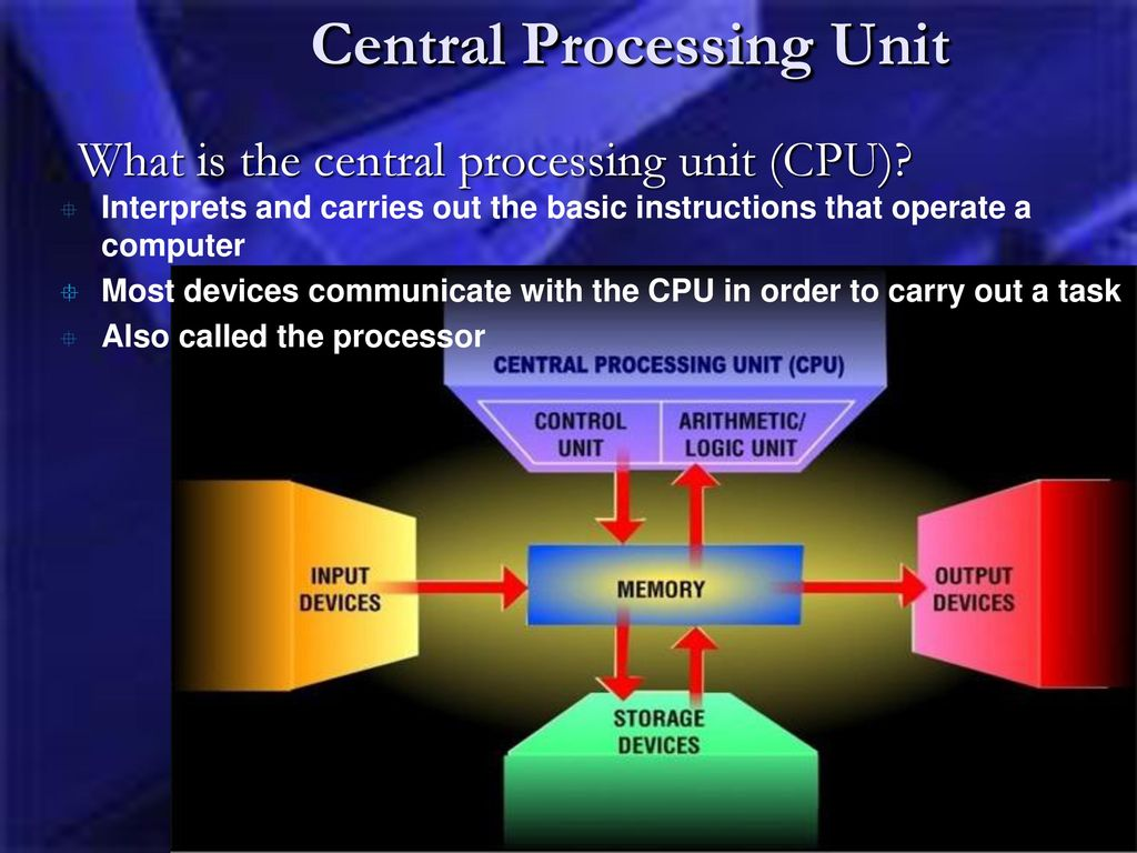 the central processing unit essay The central processing unit microprocessors, also called central processing units (cpus), are frequently described as the brains of a computer, because they act as the central control for the processing of data in personal computers (pcs) and other computers.
