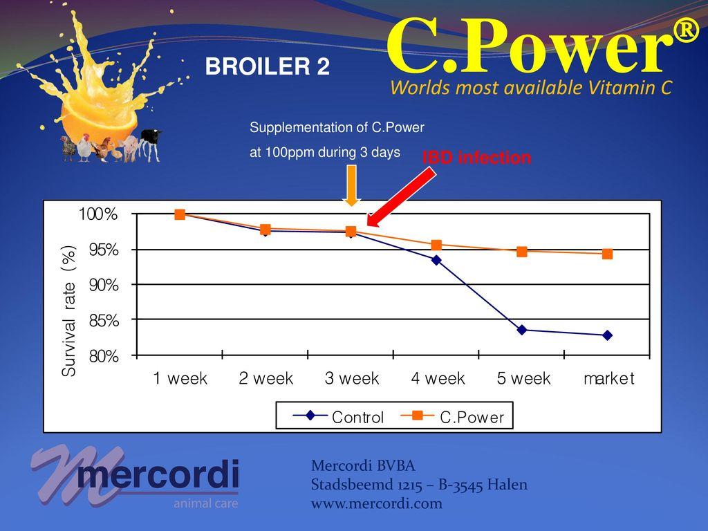 C Power  Worlds most available Vitamin C Mercordi BVBA