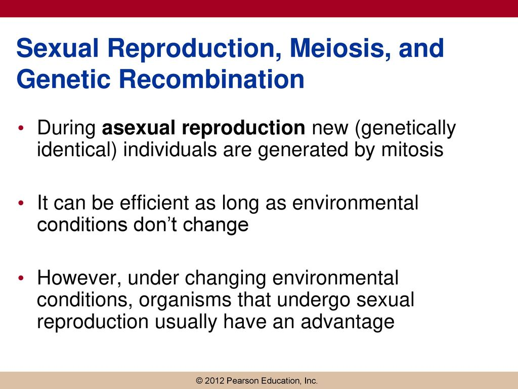 Sexual Reproduction And Meiosis Generate Genetic Variety By