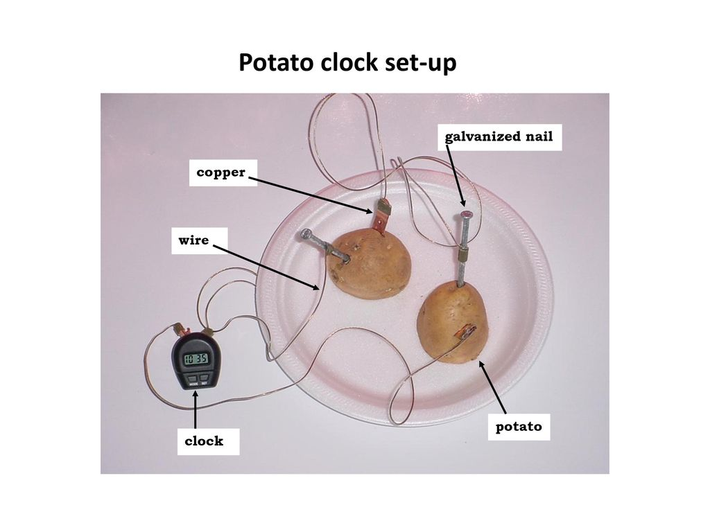 Science Safety Ppt Download How To Make A Potato Battery Circuit Diagram Image 18 Clock Set Up Galvanized Nail Copper Wire