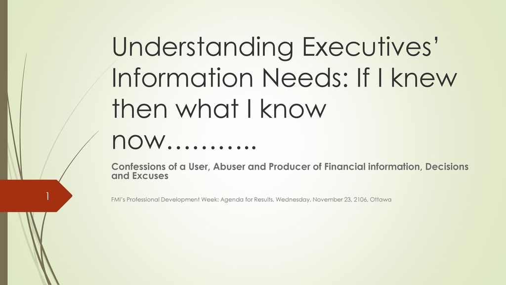 Understanding Executives' Information Needs: If I knew then what I