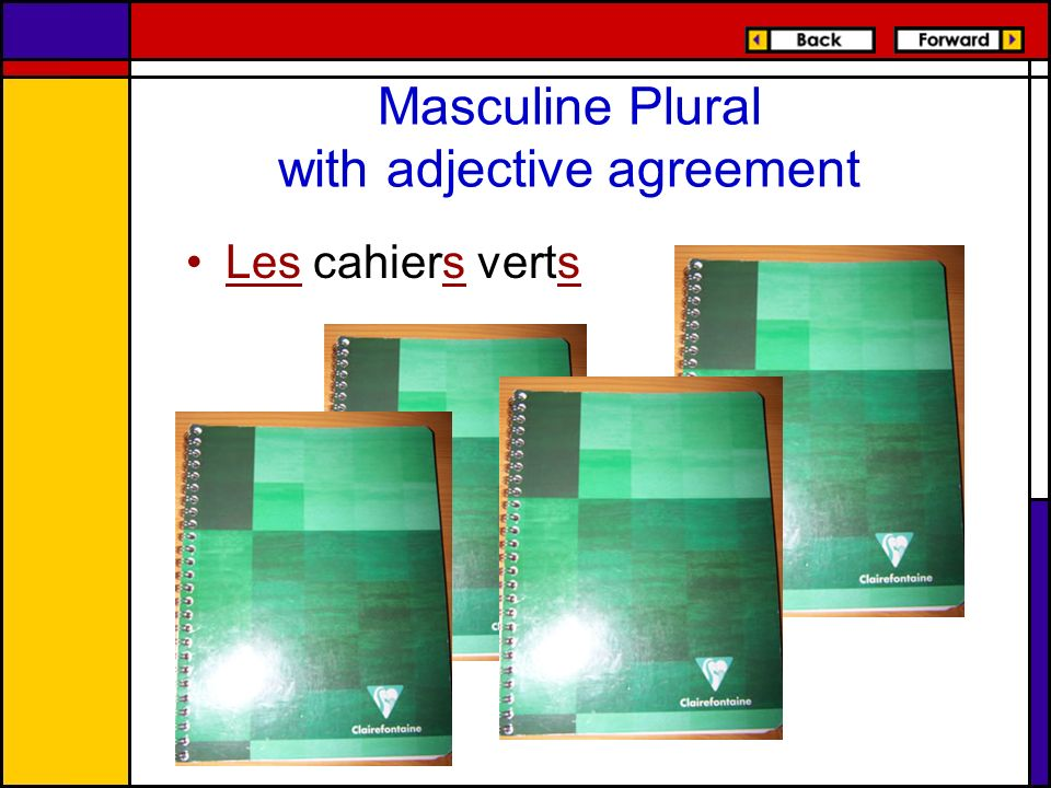 Masculine Plural with adjective agreement