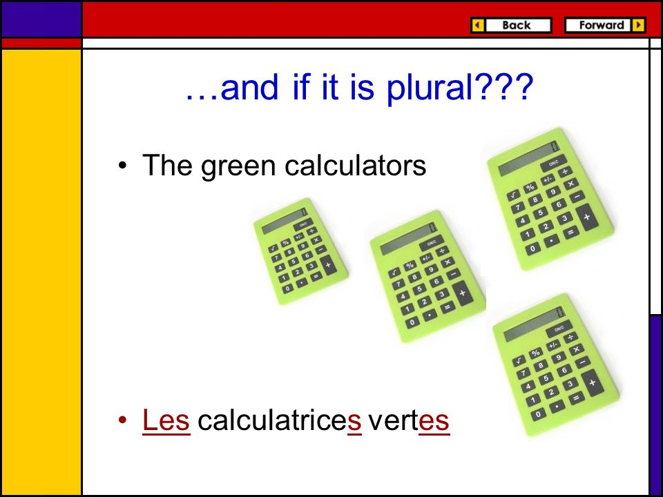 …and if it is plural The green calculators Les calculatrices vertes
