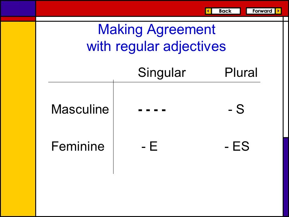Making Agreement with regular adjectives