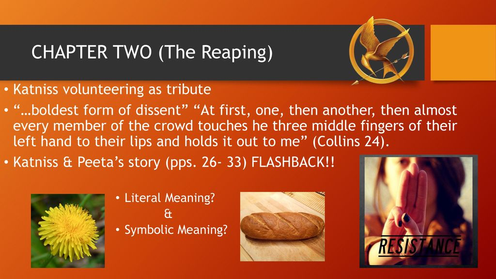 The Hunger Games By Suzanne Collins Ppt Download