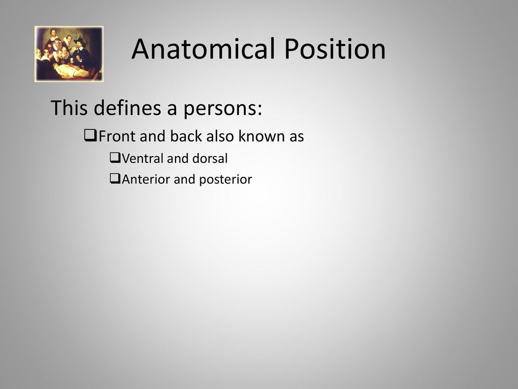 Language of Anatomy. - ppt download