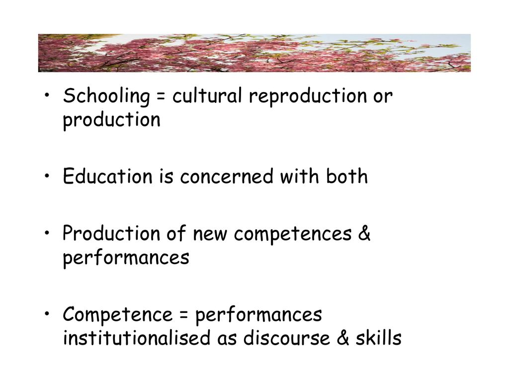 what is cultural reproduction