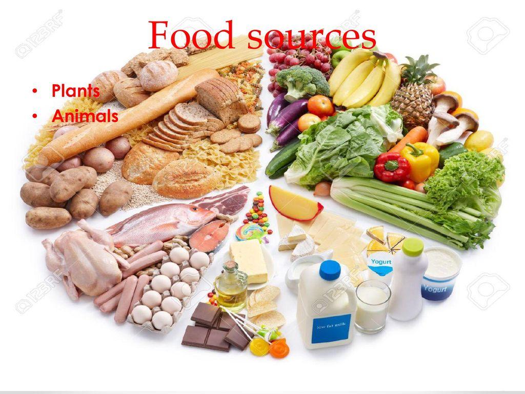 food ppt download