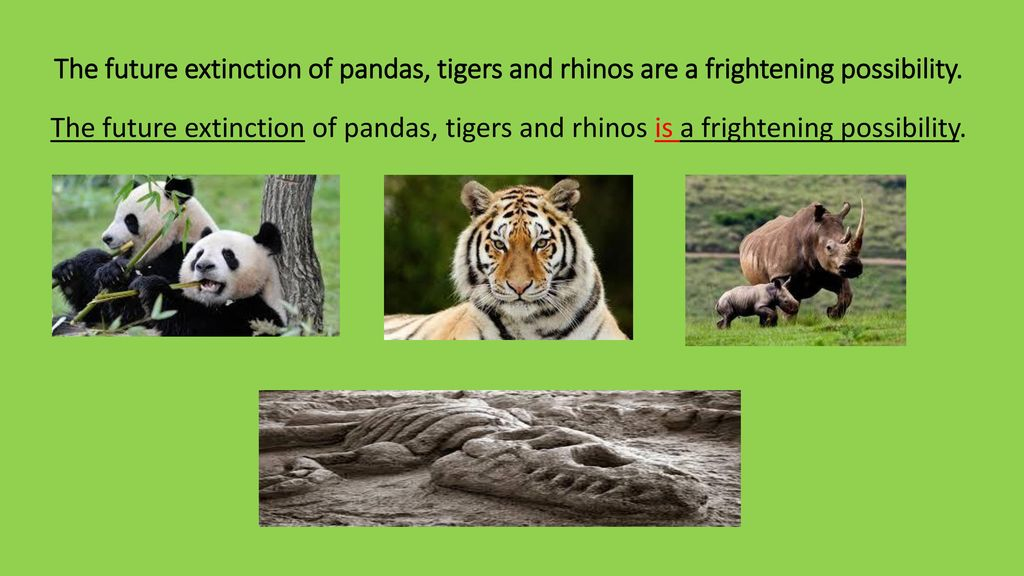 Common errors in English !? - ppt download