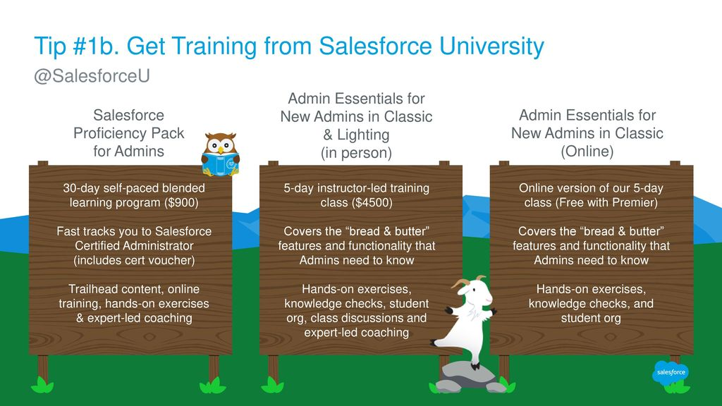 My Company Just Purchased Salesforce  Now What? - ppt download