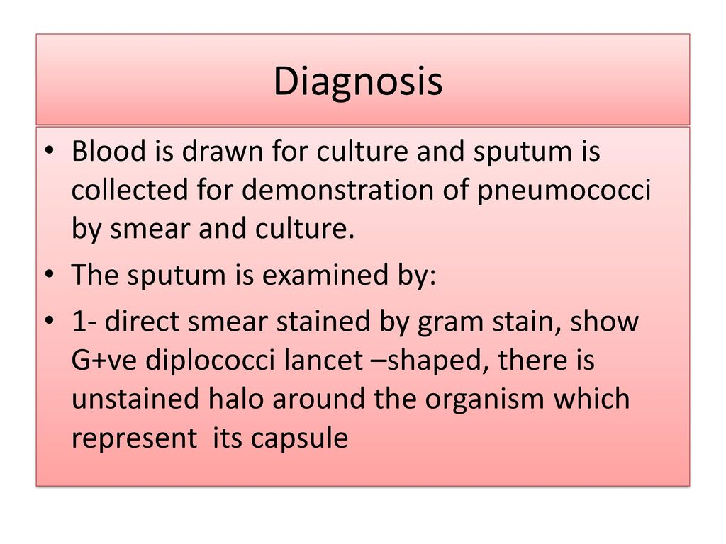 Diplococcus in the smear: what does it show