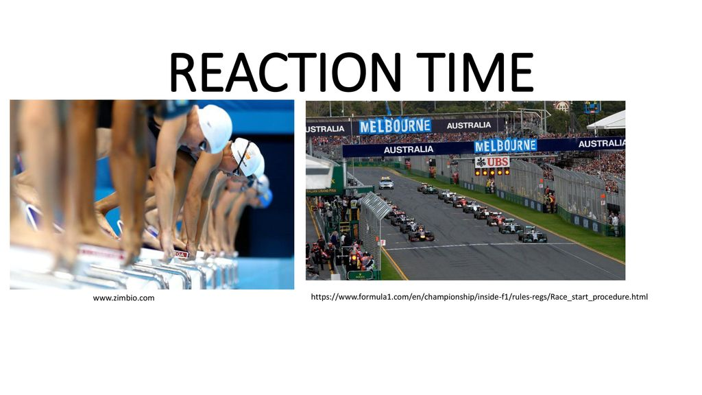 Reaction Time Ppt Download