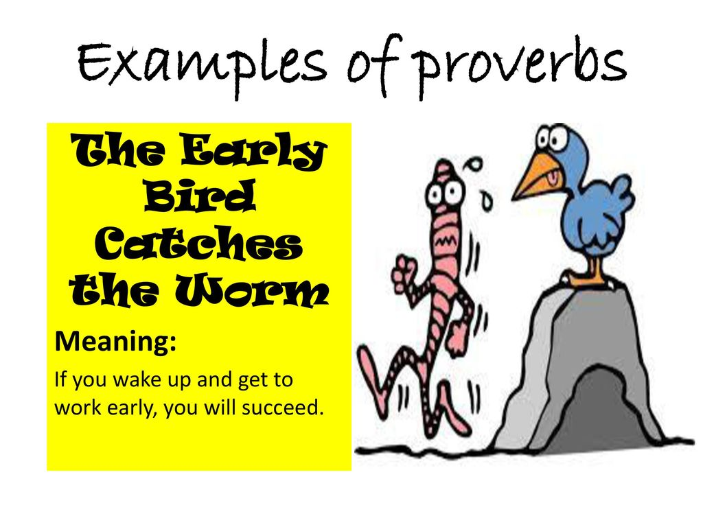 the early bird proverb