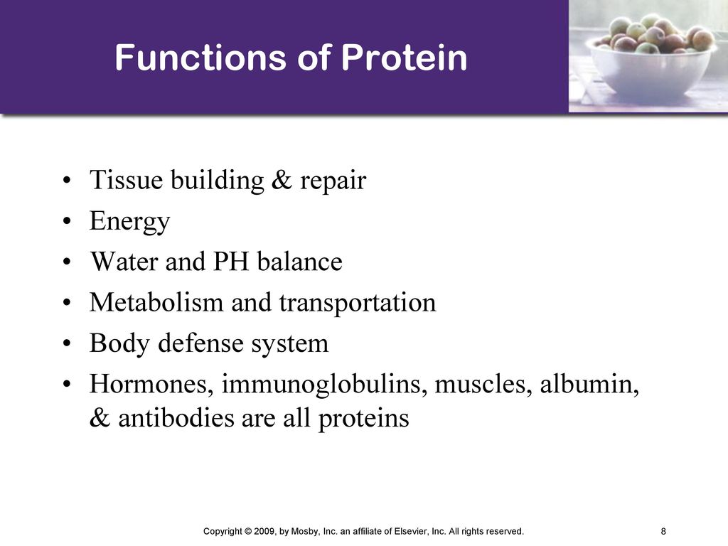 What is the building function of proteins
