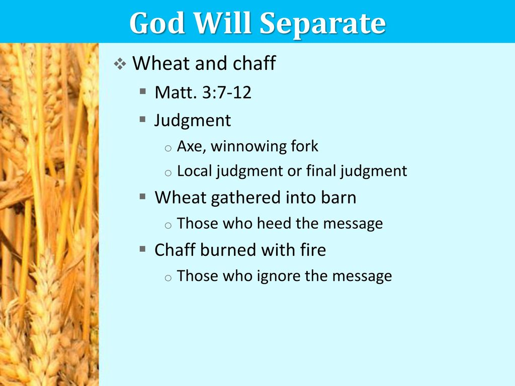 Image result for images of angels separating wheat from chaff