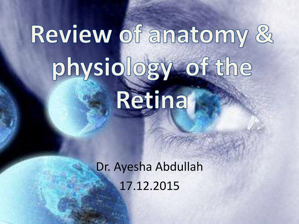 Review of anatomy & physiology of the Retina - ppt download