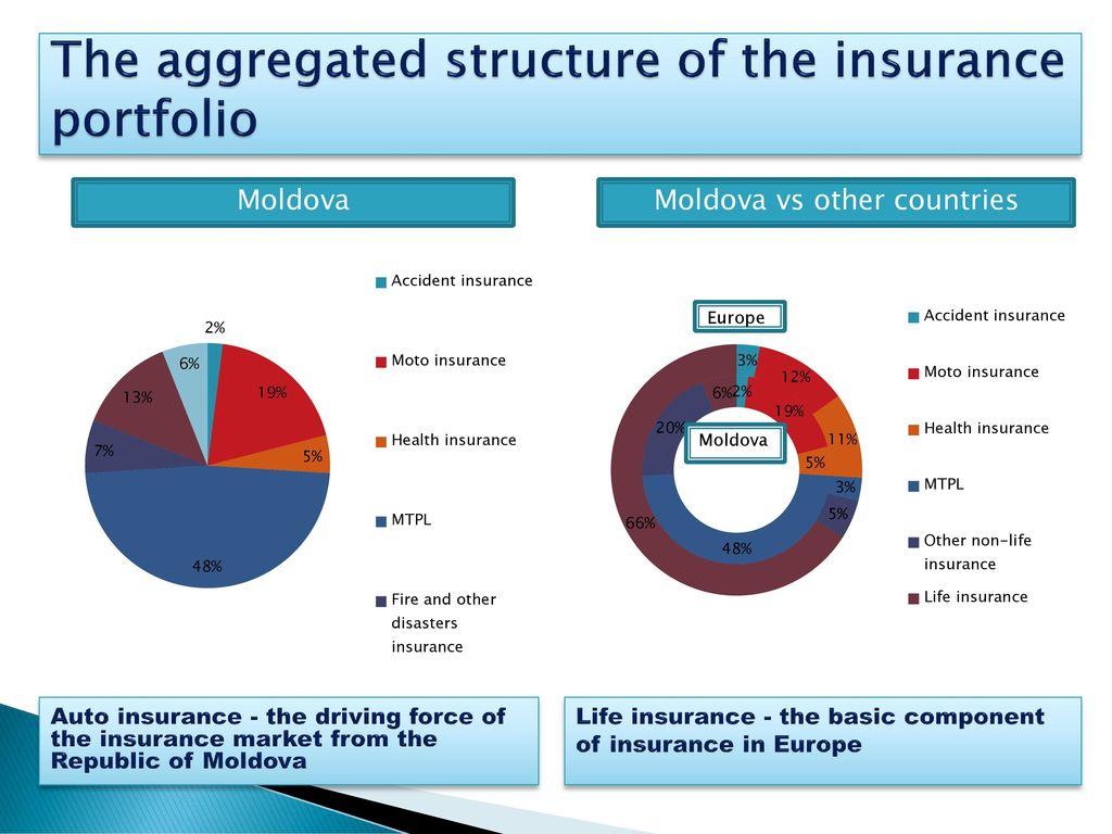 Structure of the insurance portfolio