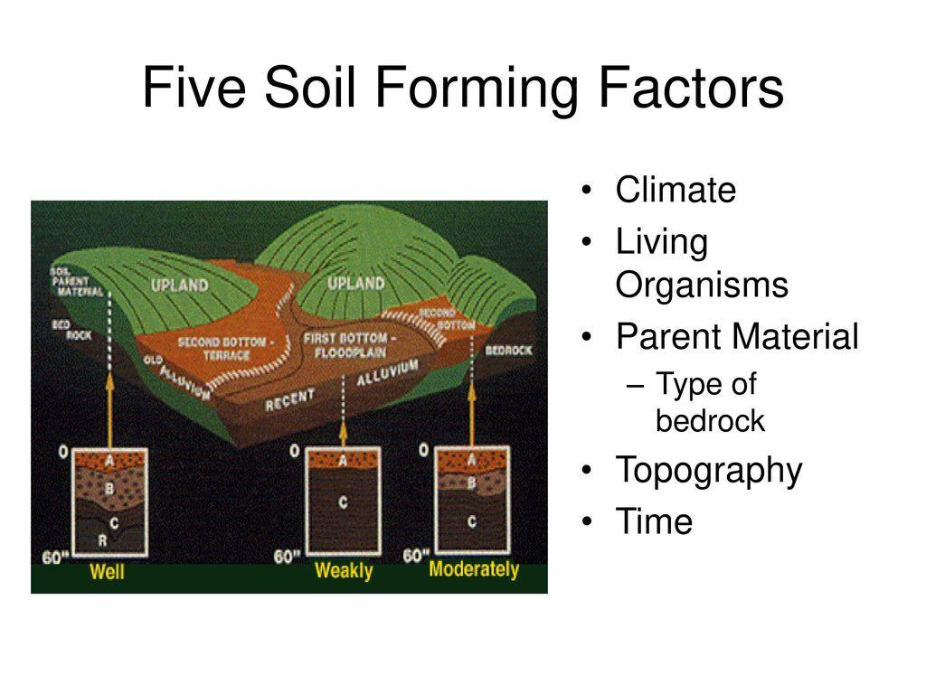 Soil formation factors 94