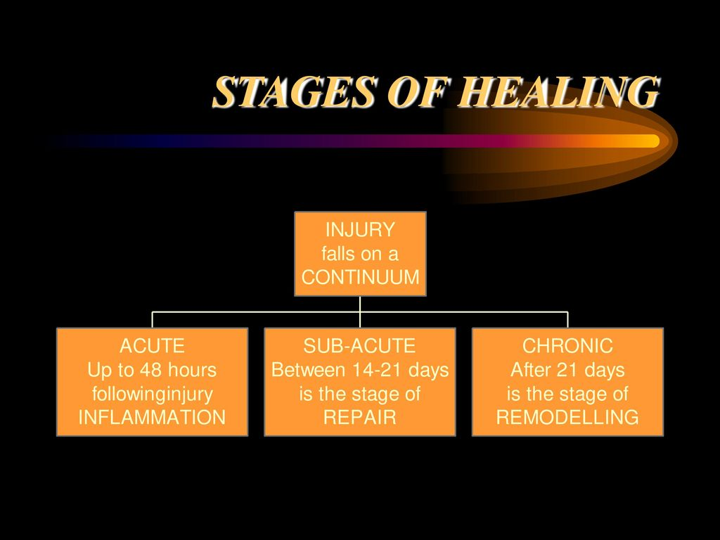 Treatment The Basic Processes Of Soft Tissue Healing Underlie All Treatment Techniques For Sports Injuries Therefore We Need To Know What Occurs In The Ppt Download