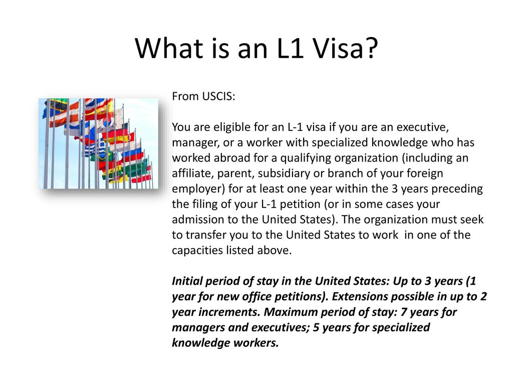L1 Visas Starting a Business in the US - ppt download