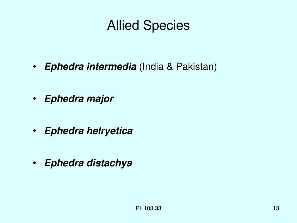 Ephedra Plant In India
