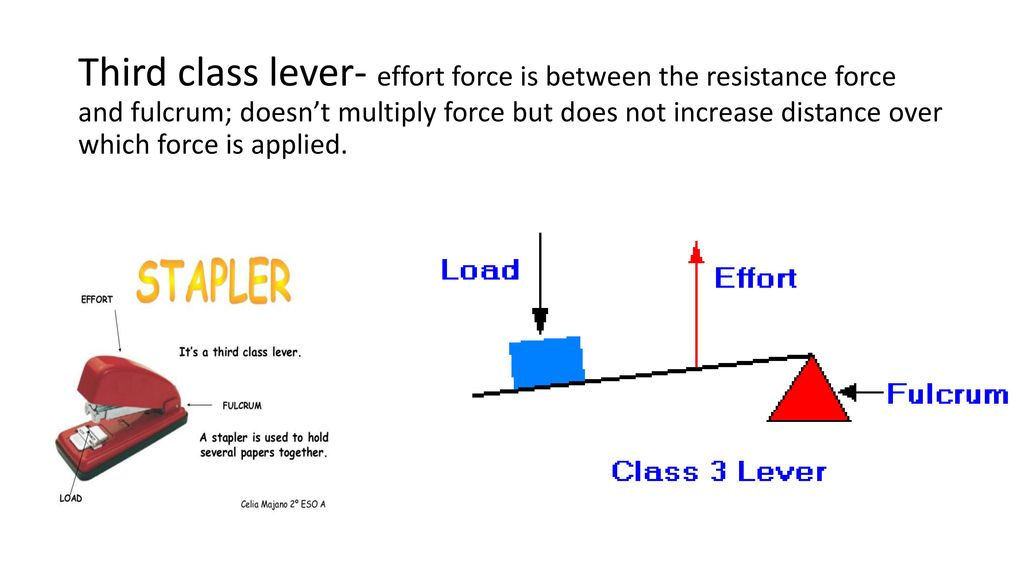 A Stapler is a class 3 lever LEVERS t