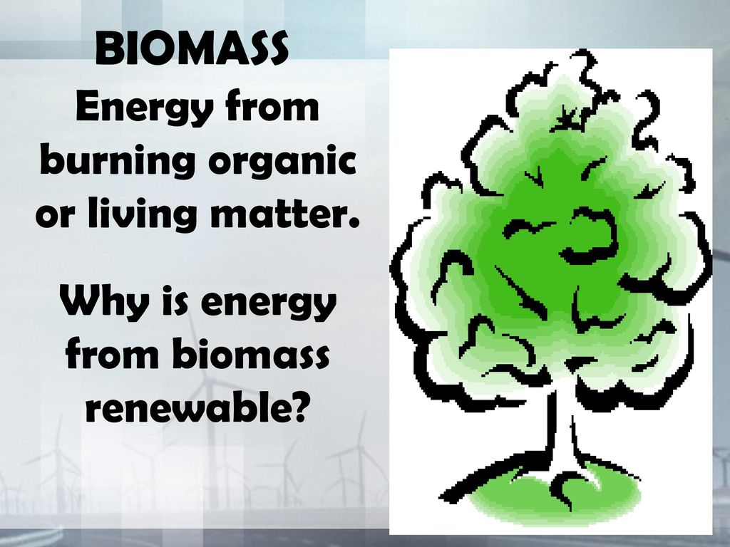 BIOMASS Energy from burning organic or living matter.