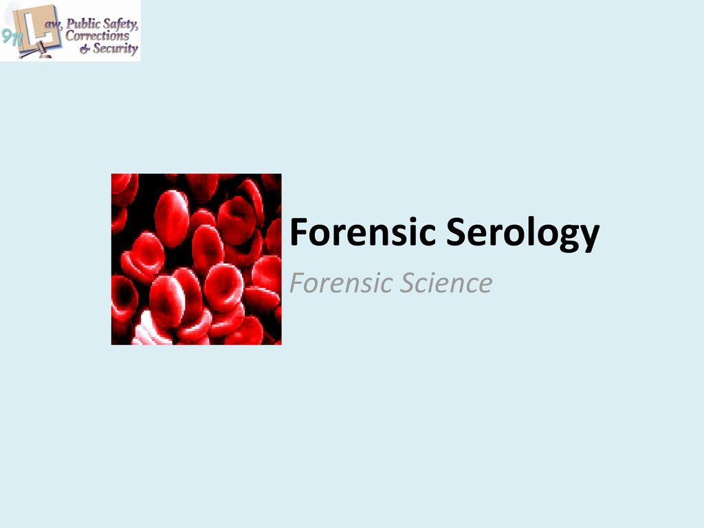 Forensic Serology Forensic Science Ppt Download