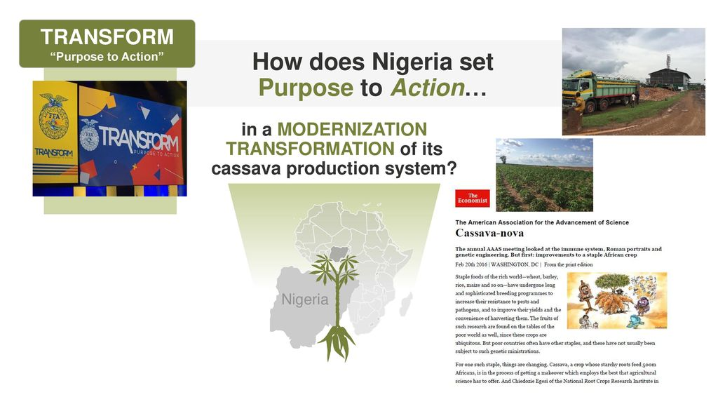 CASSAVA VALUE CHAIN TRANSFORMATION Purpose to Action - ppt download