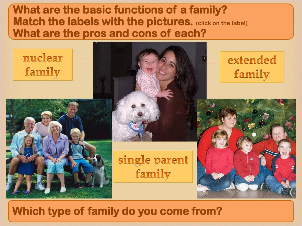 The nuclear family: the pros and cons 82
