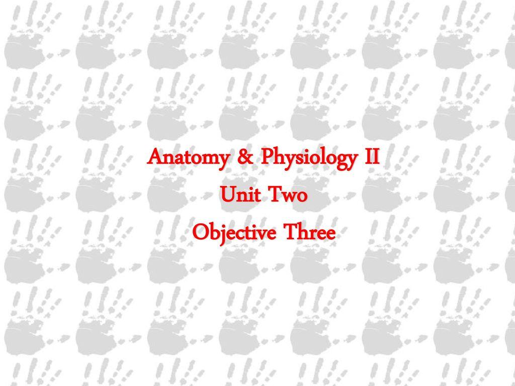 Fantástico Broward College Anatomy And Physiology 2 Bandera ...