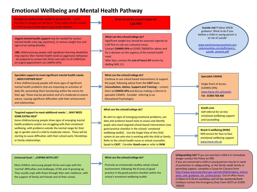 Emotional Well Being Of College >> What Should The School College Do Call Ppt Download