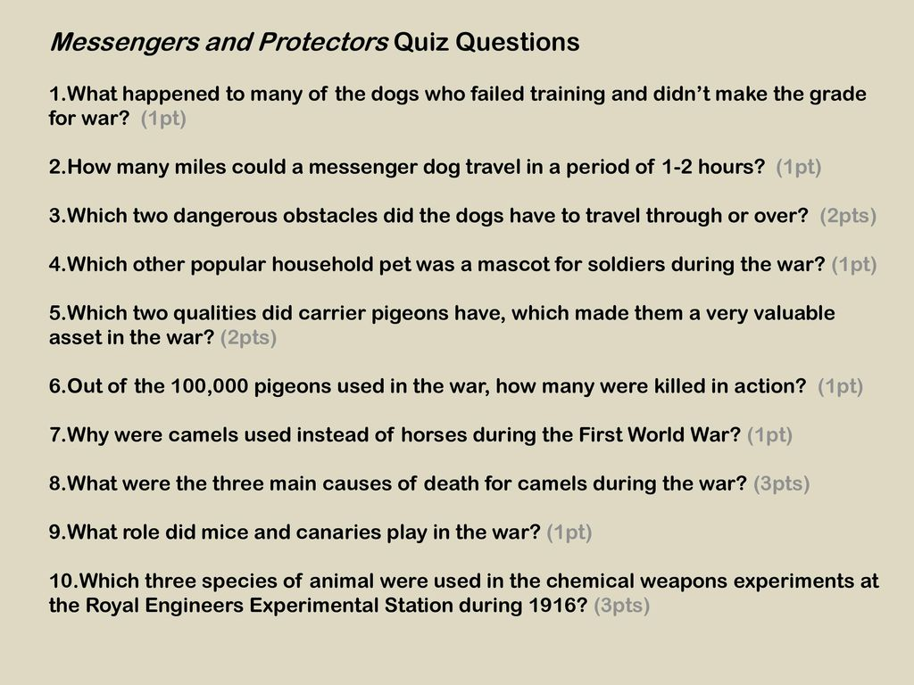 How many different species of animals were involved in World War One