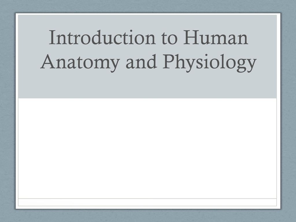 Introduction To Human Anatomy And Physiology Ppt Download