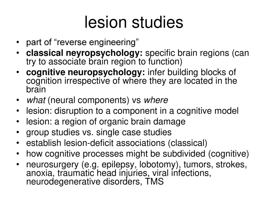 what are lesion studies