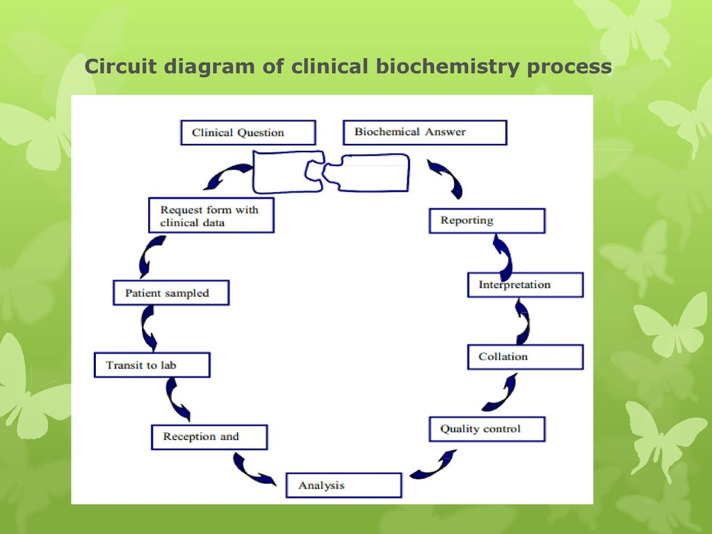 circuit diagram of clinical biochemistry process  18 circuit
