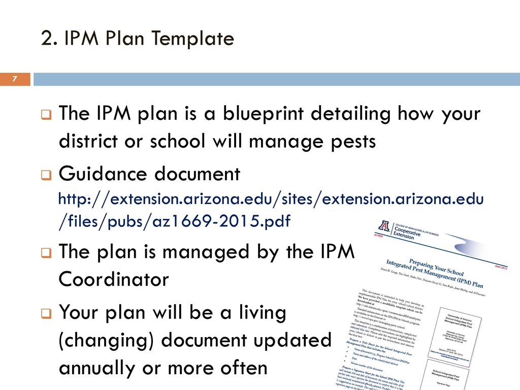 Pest management plan template image collections professional report template word for Pest management plan template