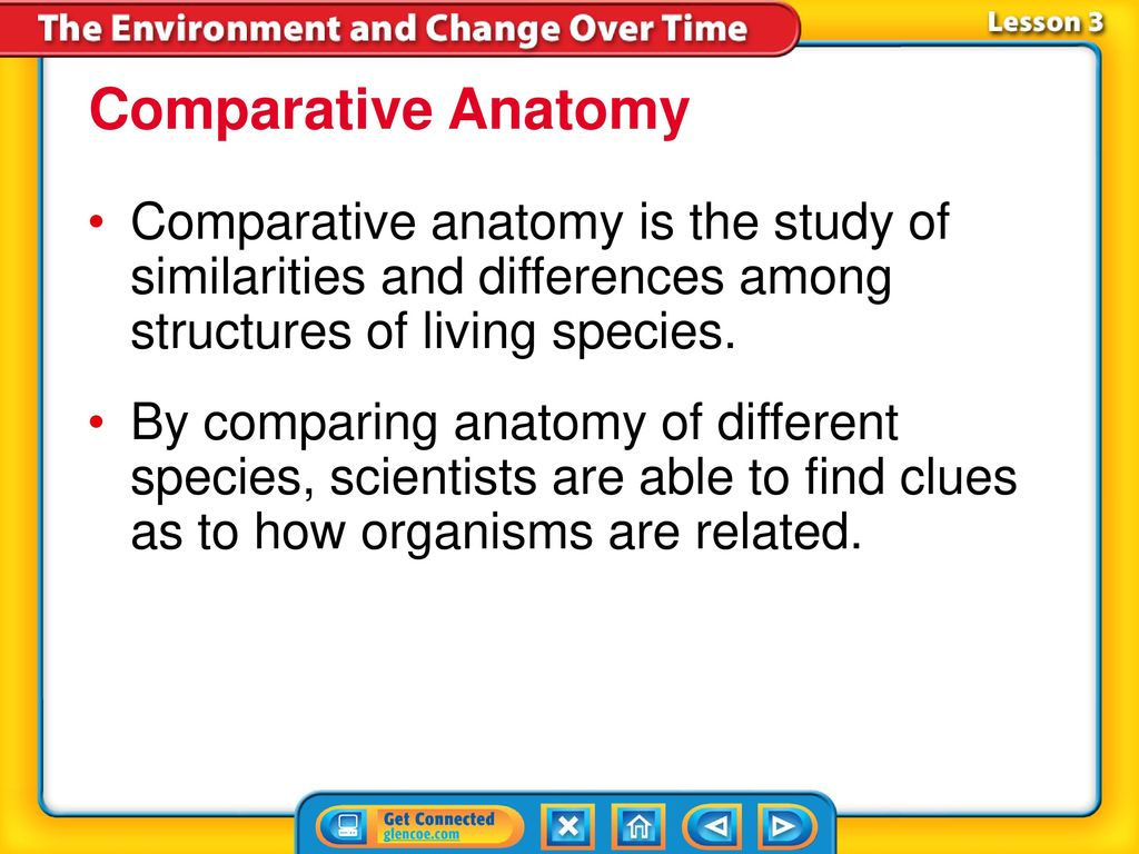 Bellwork: Pull out Natural Selection Lab Summary for me to read ...
