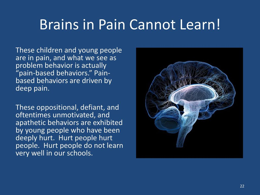 Brains In Pain Cannot Learn >> Toward A Re Visioning Of Our Schools Ppt Download