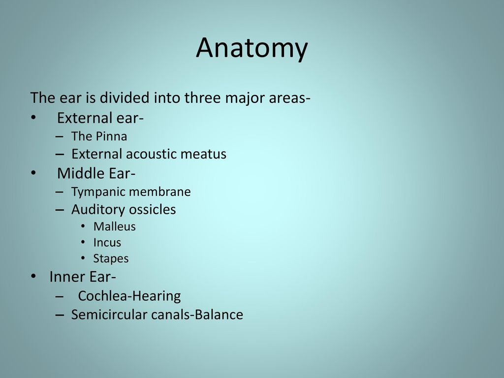 The Ear-Hearing and Balance - ppt download