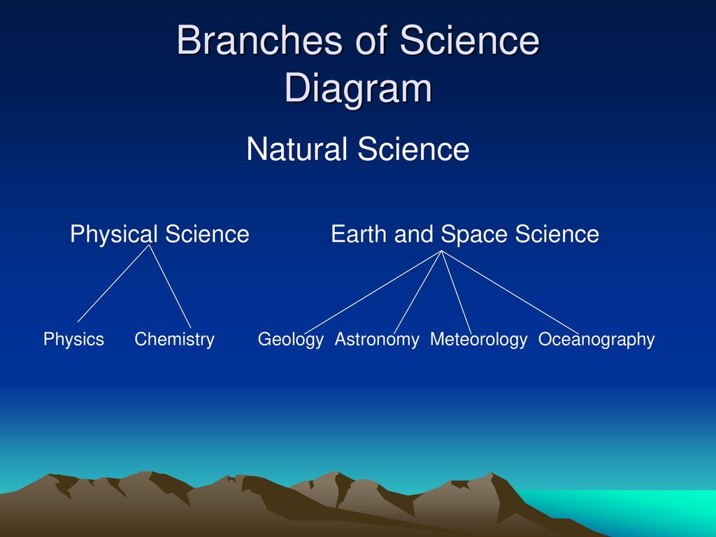 THE BRANCHES OF SCIENCE - ppt ...