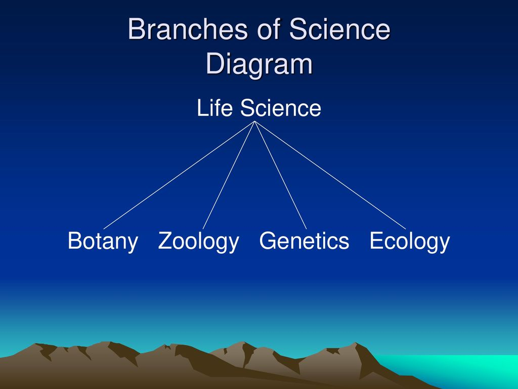 What are three branches of life science