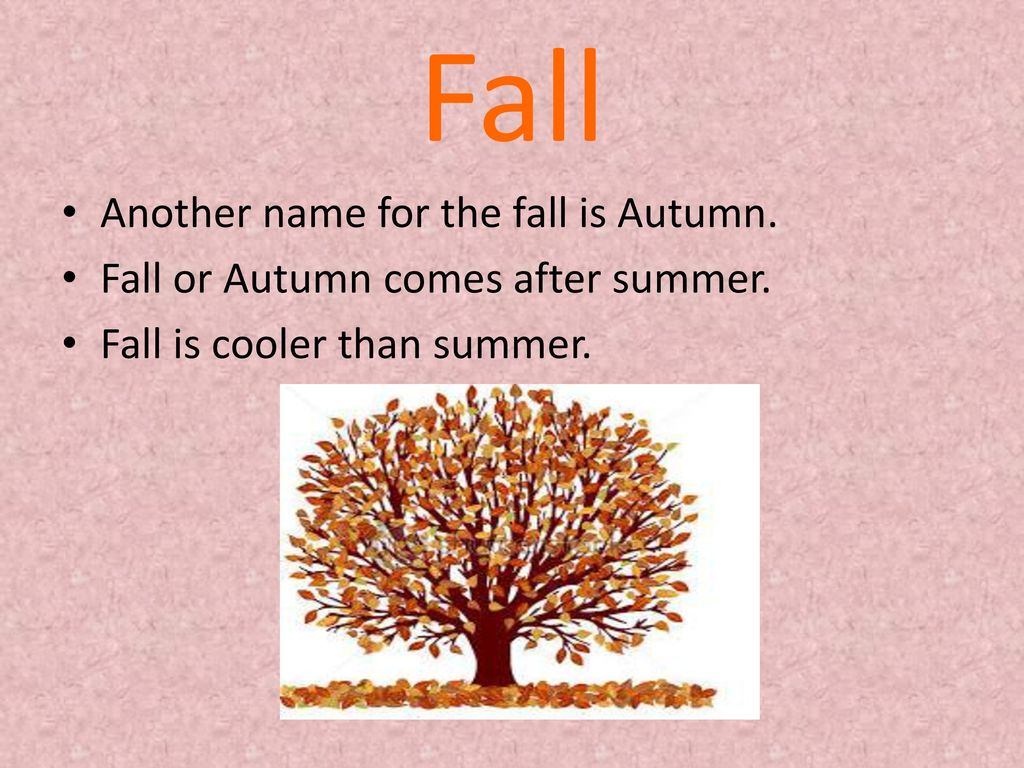 fall another name for the fall is autumn