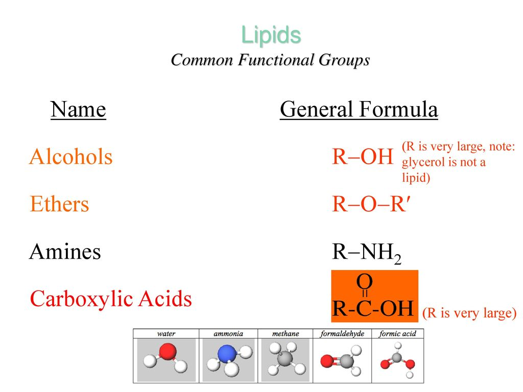 fats steroids and terpenes are examples of