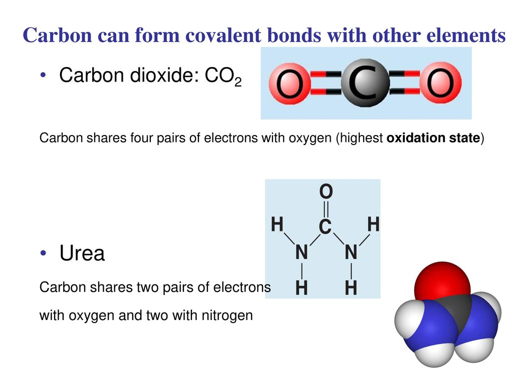 Chemical Principles Carbon Ppt Download Dioxide Co2 Atomic Diagram Royalty Free Stock Photo Image Can Form Covalent Bonds With Other Elements