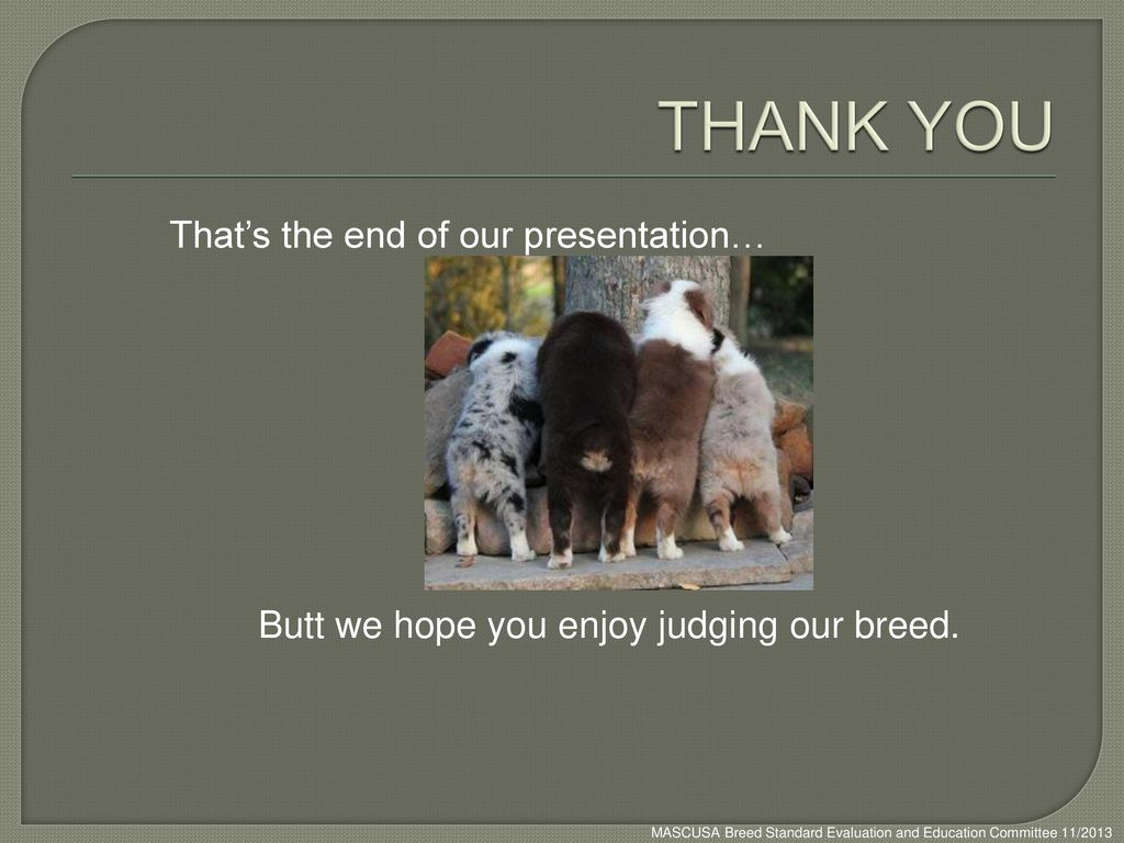 THANK YOU That's the end of our presentation…