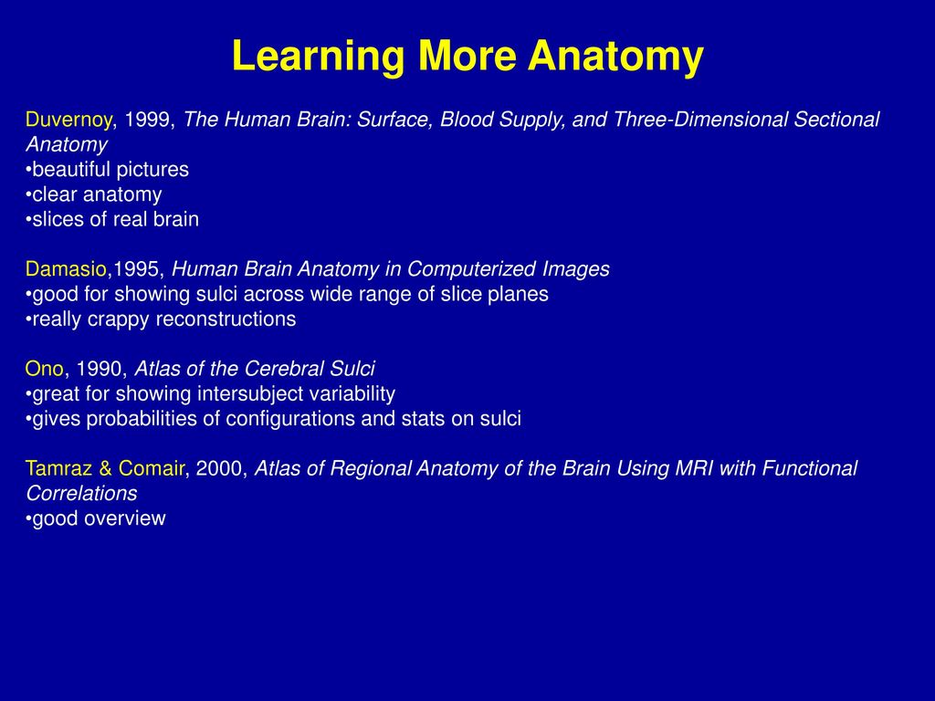 Contemporary Mri Sectional Anatomy Ideas - Anatomy and Physiology ...