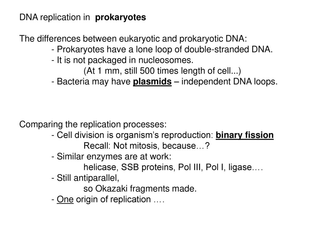 Nucleic Acids (How much do you recall?) - Structure