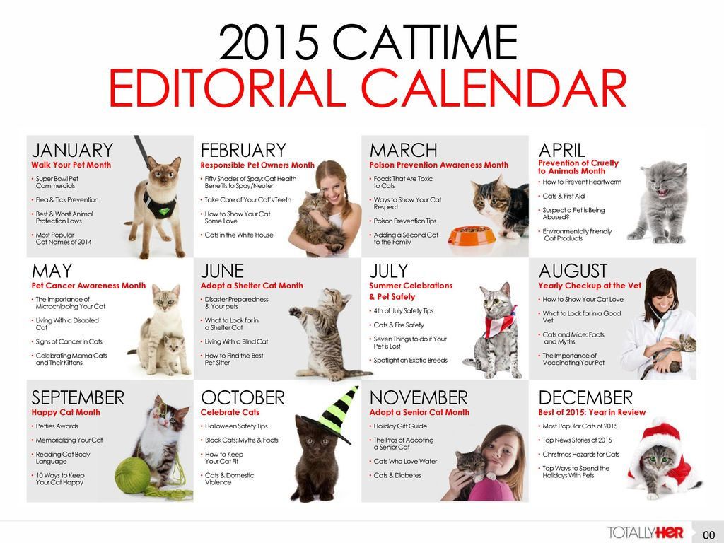 EDITORIAL CALENDAR 2015 CATTIME JANUARY FEBRUARY MARCH APRIL MAY